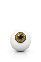 brown eyeball