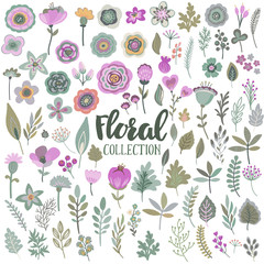 Vector graphic set with beautiful flowers, leaves, branches, berries.