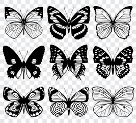 Butterfly silhouettes vector macro collection