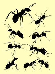 Ant animal silhouette. Good use for symbol, logo, web icon, mascot, sign, or any design you want.