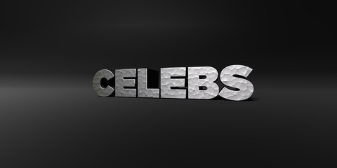 CELEBS - hammered metal finish text on black studio - 3D rendered royalty free stock photo. This image can be used for an online website banner ad or a print postcard.