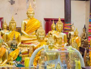 Editorial use only:Samutprakarn, thailand October 19, 2016: Budd