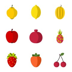 Fruit icons set. Flat illustration of 9 fruit vector icons for web