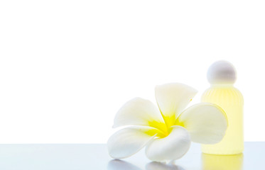 frangipani flower in spa on white background