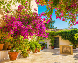 Wall Mural - Traditional house and flower Paleokastritsa town, Corfu island, Greece