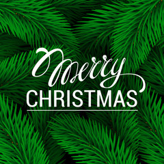 Merry Christmas Lettering. Vector illustration Green branches of spruce background. Poster and flyer design template typography, lettering and calligraphy