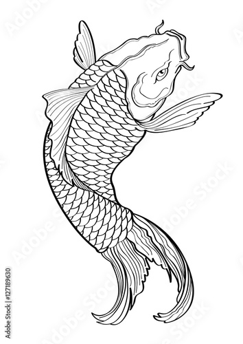 Vector illustration graphic background koi fish tattoo for Koi fish vector