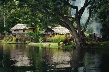 Settlement of huts beside the Sepik River, Papua New Guinea, Pacific Islands, Pacific
