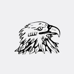 Hand-drawn pencil graphics, bird, eagle, hawk, kite, vulture. Stencil style