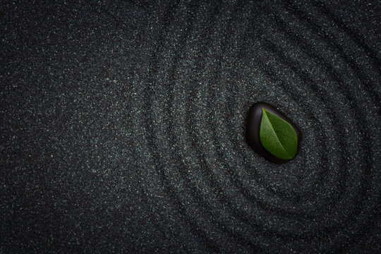 Zen garden with wave lines in the black grain sand with a green