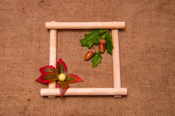Illustration of a wooden frame with plants on a background of bu