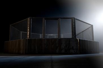 MMA Cage Night