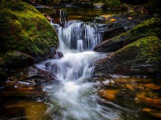 Killarney National Parc Torc Waterfall