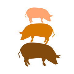 pig vector illustration silhouette set