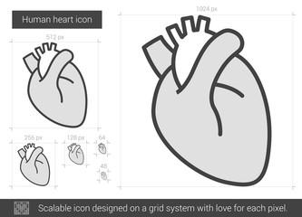 Human heart line icon.
