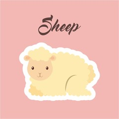 sheep animal sticker over pink background. colorful design. vector illustration