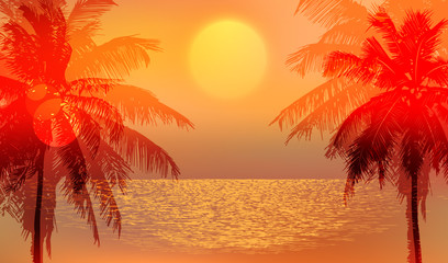 tropical sunset or sunrise