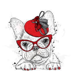 Cute puppy wearing a hat and sunglasses. French Bulldog. Vector illustration.