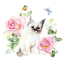Kitten and roses. Water color painting. Greeting cards. Roses background, watercolor composition. Flower backdrop. Decoration with blooming roses, hand-drawing. Illustration.