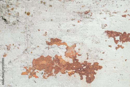 Real Estate repair: Chipped paint wall or ceiling - Repair