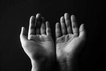 Praying Hand.