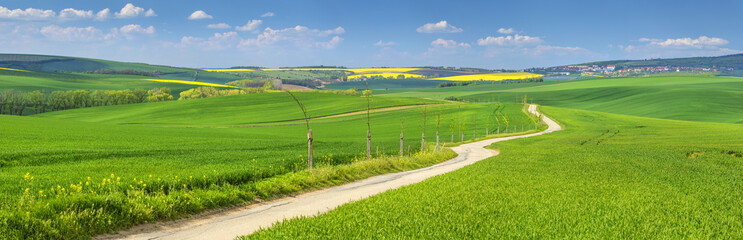 Foto auf Leinwand Hugel panorama with farm road in spring fields