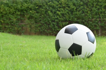 Football on the lawn with copy space for text,sport equipment.