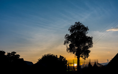 silhouette shot image of tree and sunset sky