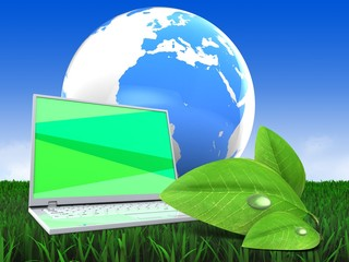 3d illustration of laptop computer over meadow background with earth and green leaf