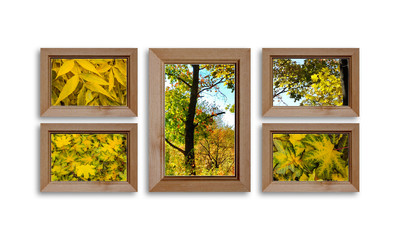 Collage of wooden frames with colorful autumn motif posters. Countryside style decor