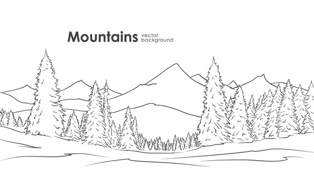 Vector illustration: Hand drawn Mountains sketch background with pine forest on foreground. Line design