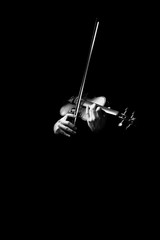 male musician hands playing classical violin, black and white