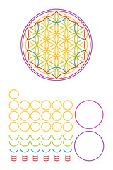Flower of Life components and building set. Ancient symbol composed of nineteen overlapping circles and thirty-six segments, forming a flower like pattern, surrounded by two circles. Sacred geometry.
