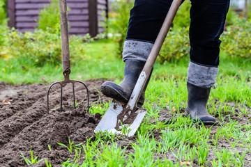 Gardener digging in the garden. Soil preparing for planting in spring. Gardening.