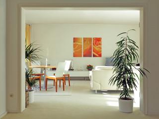 Durchgang zum Wohnzimmer Interior