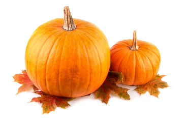 Squash with fall leaves closeup Orange pumpkins on white