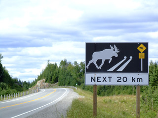 Large sign warning of wildlife crossing road