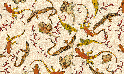 Lizards various types in pattern on rocky background.
