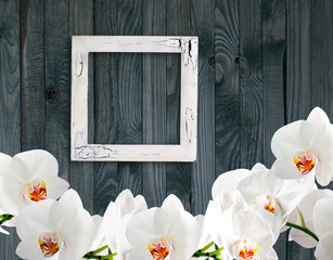 White orchid and photo frame on background of shabby wooden plan
