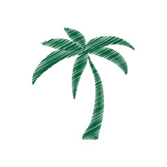 tree palm tropical isolated icon vector illustration design
