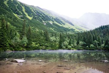 foggy mountain lake in summer