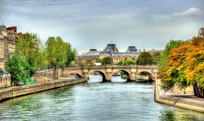 The Seine and Pont Neuf bridge in Paris - France Wall mural