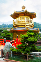 Traditional chinese house in public Nan Lian Garden, Hong Kong, China and bonsai trees