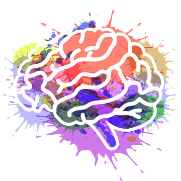 vector illustration brain on watercolor background EPS 10