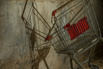 Last of the Shopping Carts