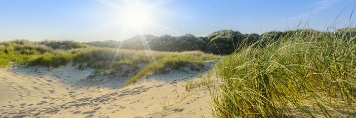 Wall Mural - Sommerliche Dünenlandschaft auf norddeutscher Insel mit Sonnenstrahlen | Nordsee - Banner