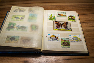 stamp collecting 11