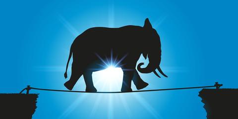 éléphant - funambule - défi - challenge