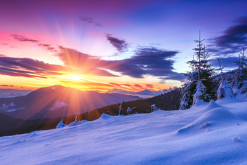 Majestic sunrise in the  winter mountains. Dramatic morning sky. View of snow-covered  trees and  hills at distance.