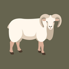 sheep ram vector illustration style Flat